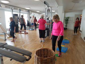 Ingrids sjukgymnastik Varberg Balans och yrselgrupp